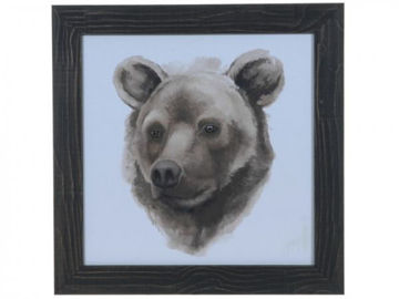 Picture of ANIMAL STUDY (BEAR)