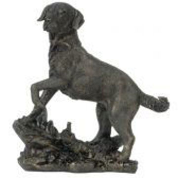 Picture of LAB STATUE