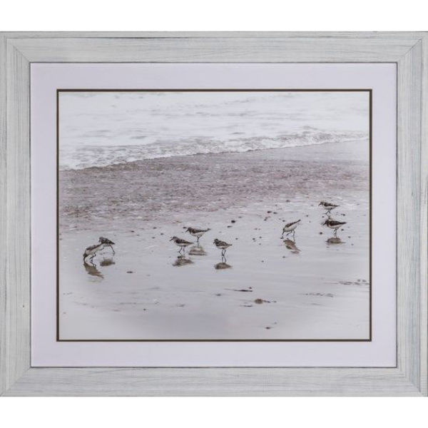 Picture of SANDPIPERS